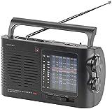 auvisio Reiseradio: Analoger 9-Band-Weltempfänger mit Bluetooth, USB, SD, AUX und Akku (Analogradio)